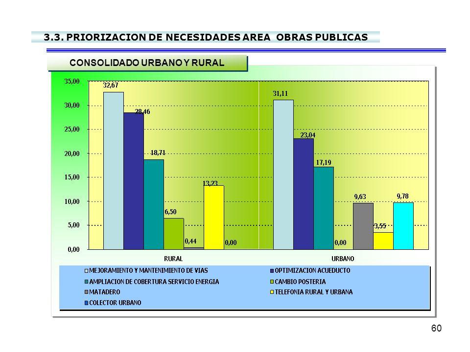 3.3. PRIORIZACION DE NECESIDADES AREA OBRAS PUBLICAS