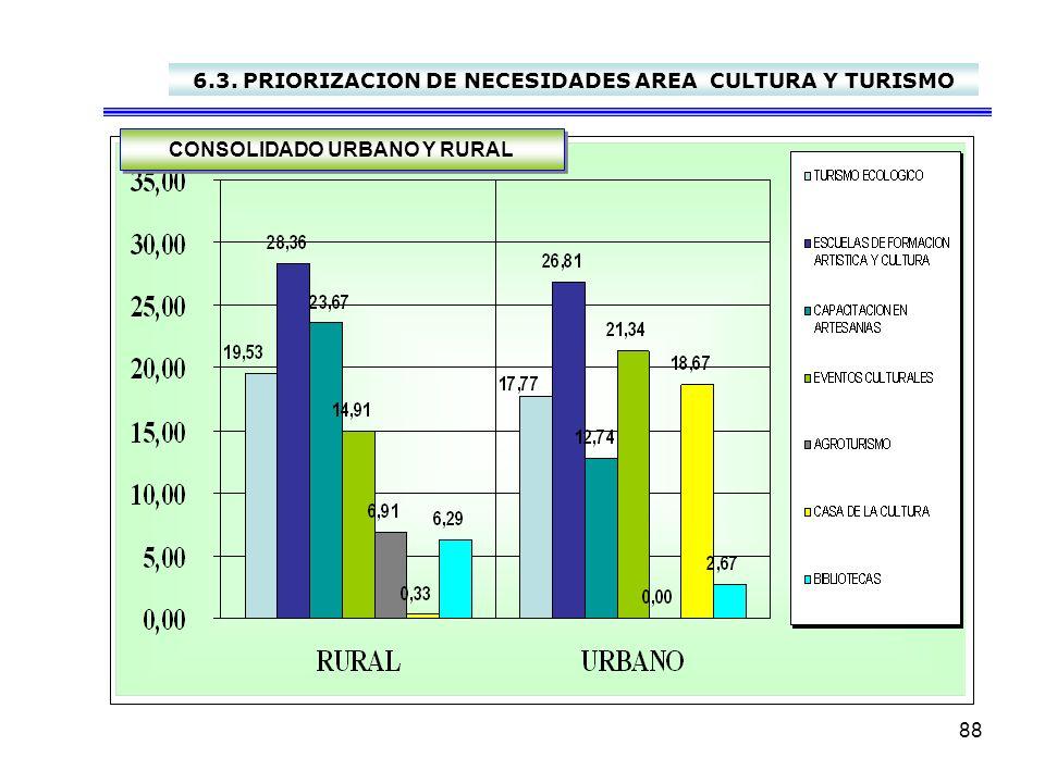 6.3. PRIORIZACION DE NECESIDADES AREA CULTURA Y TURISMO