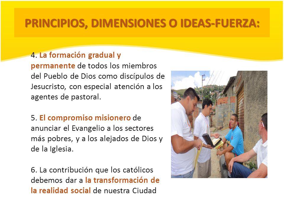 PRINCIPIOS, DIMENSIONES O IDEAS-FUERZA: