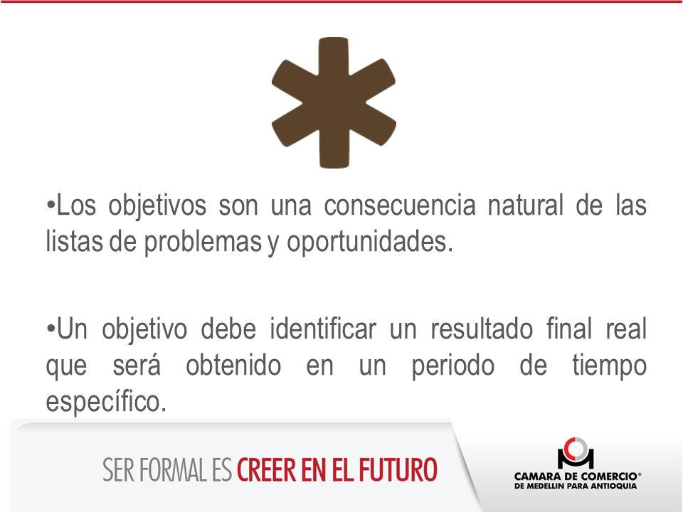 Los objetivos son una consecuencia natural de las listas de problemas y oportunidades.