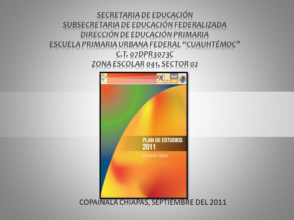 SECRETARIA DE EDUCACIÓN SUBSECRETARIA DE EDUCACIÓN FEDERALIZADA