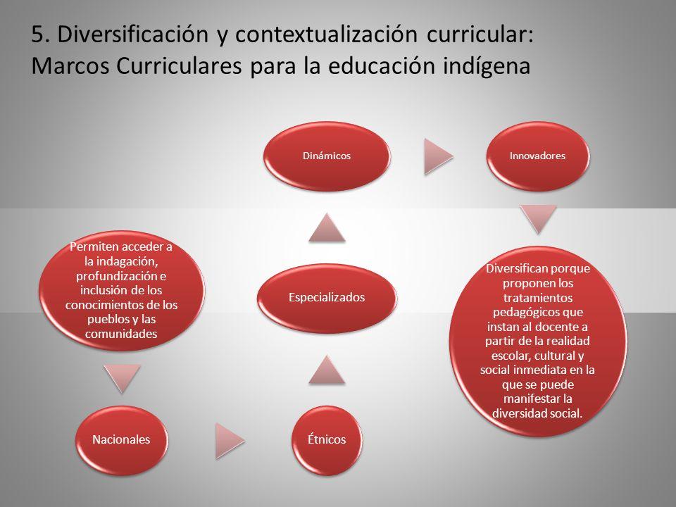 5. Diversificación y contextualización curricular: