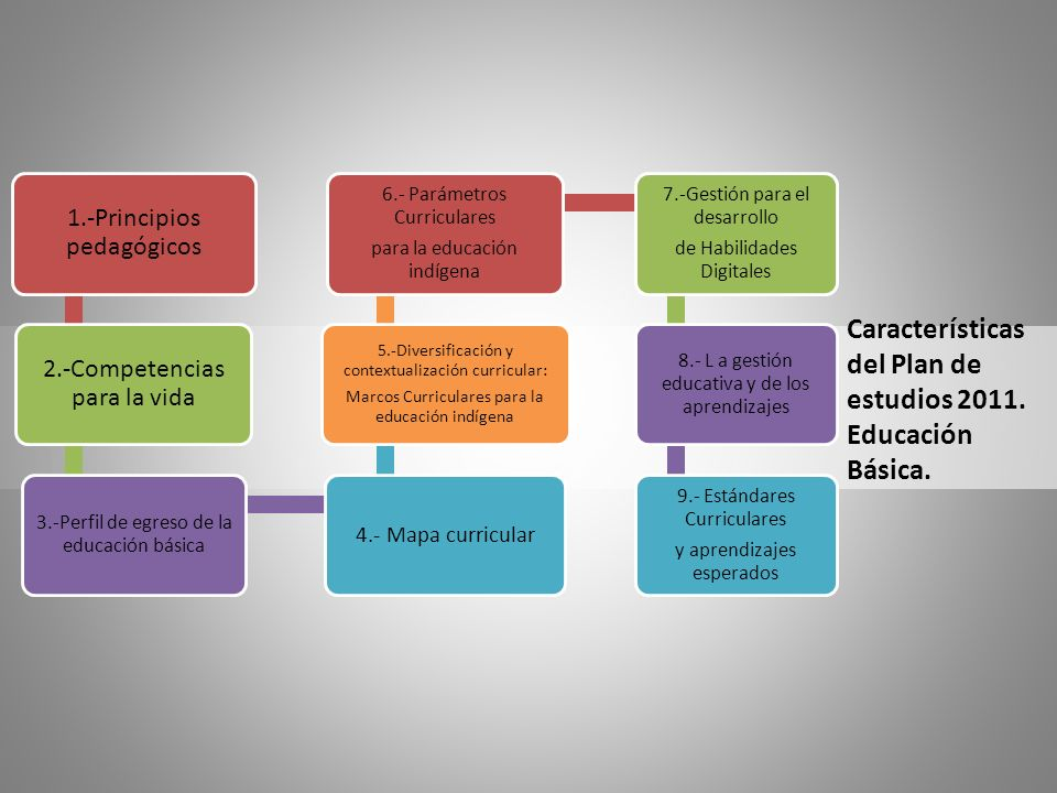 Características del Plan de estudios 2011. Educación Básica.
