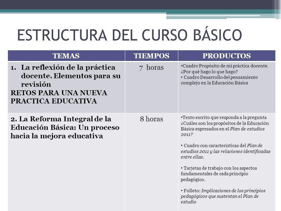 ESTRUCTURA DEL CURSO BÁSICO