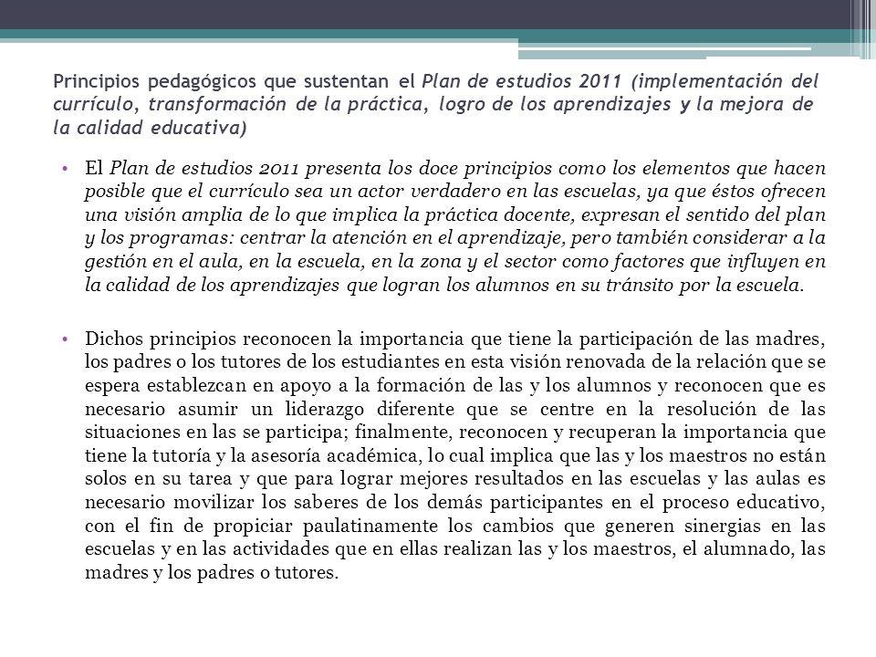 Principios pedagógicos que sustentan el Plan de estudios 2011 (implementación del currículo, transformación de la práctica, logro de los aprendizajes y la mejora de la calidad educativa)