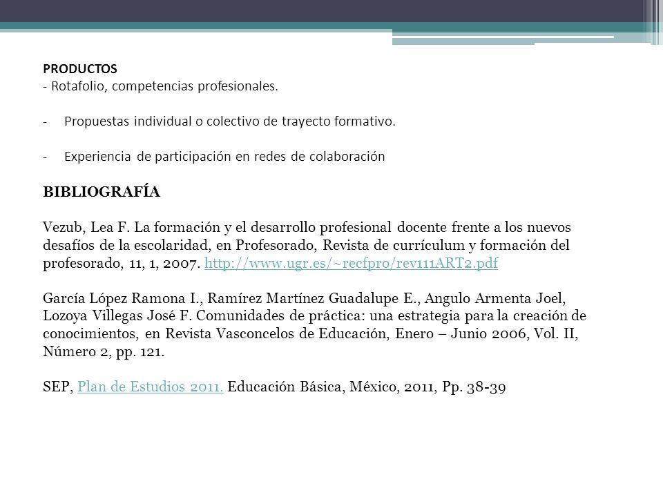 PRODUCTOS Rotafolio, competencias profesionales. Propuestas individual o colectivo de trayecto formativo.