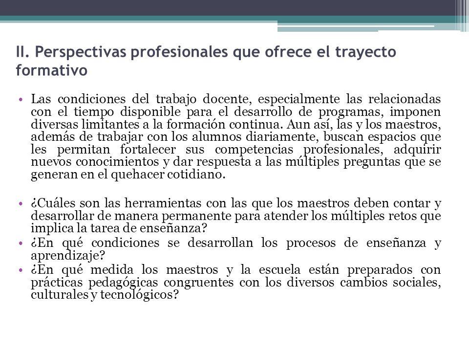 II. Perspectivas profesionales que ofrece el trayecto formativo