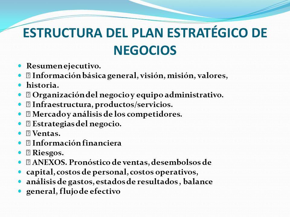 ESTRUCTURA DEL PLAN ESTRATÉGICO DE NEGOCIOS