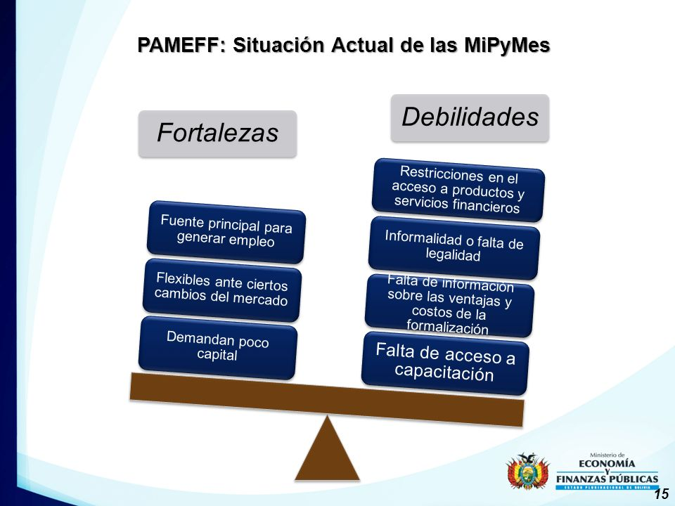 PAMEFF: Situación Actual de las MiPyMes
