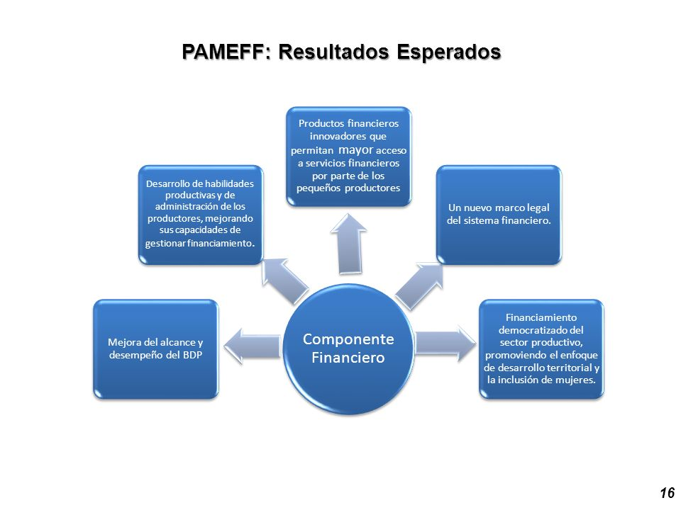 PAMEFF: Resultados Esperados