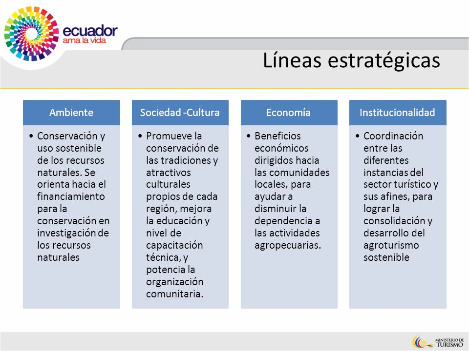 Líneas estratégicas Ambiente
