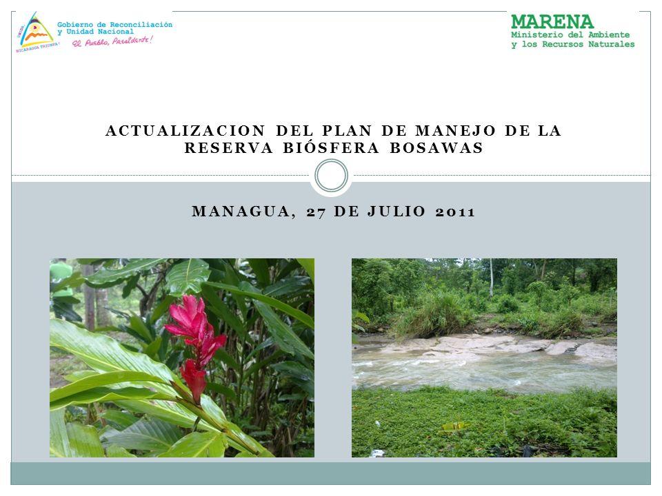 ACTUALIZACION DEL PLAN DE MANEJO DE LA RESERVA BIÓSFERA BOSAWAS