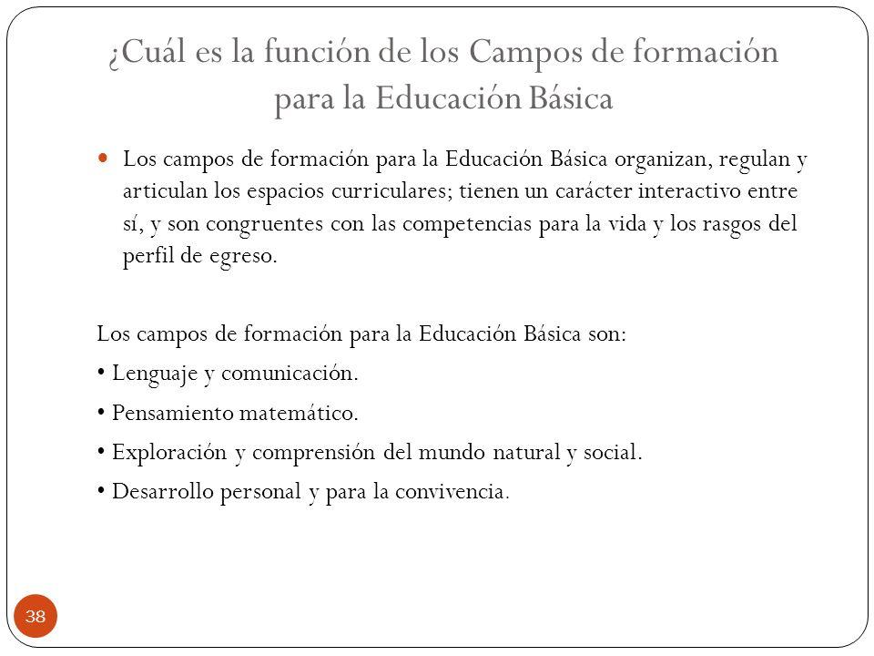 ¿Cuál es la función de los Campos de formación para la Educación Básica