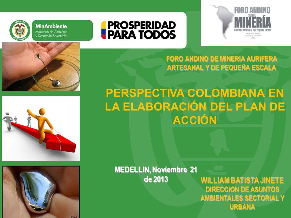 Título PERSPECTIVA COLOMBIANA EN LA ELABORACIÓN DEL PLAN DE ACCIÓN
