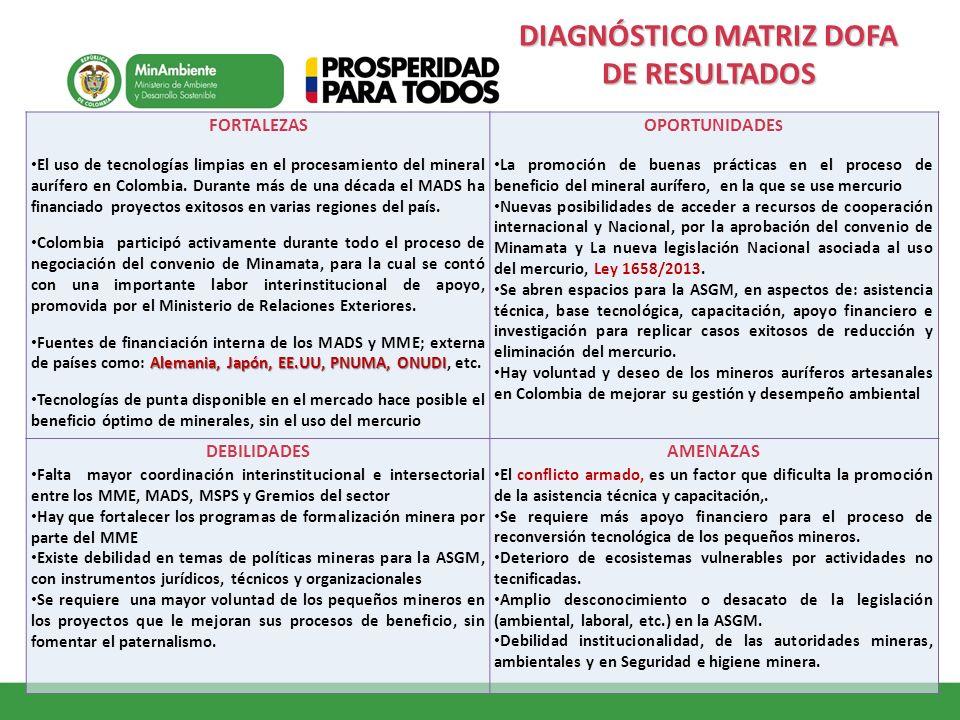 DIAGNÓSTICO MATRIZ DOFA DE RESULTADOS