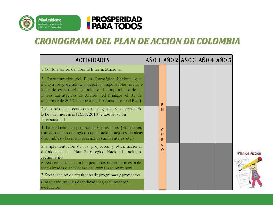 CRONOGRAMA DEL PLAN DE ACCION DE COLOMBIA