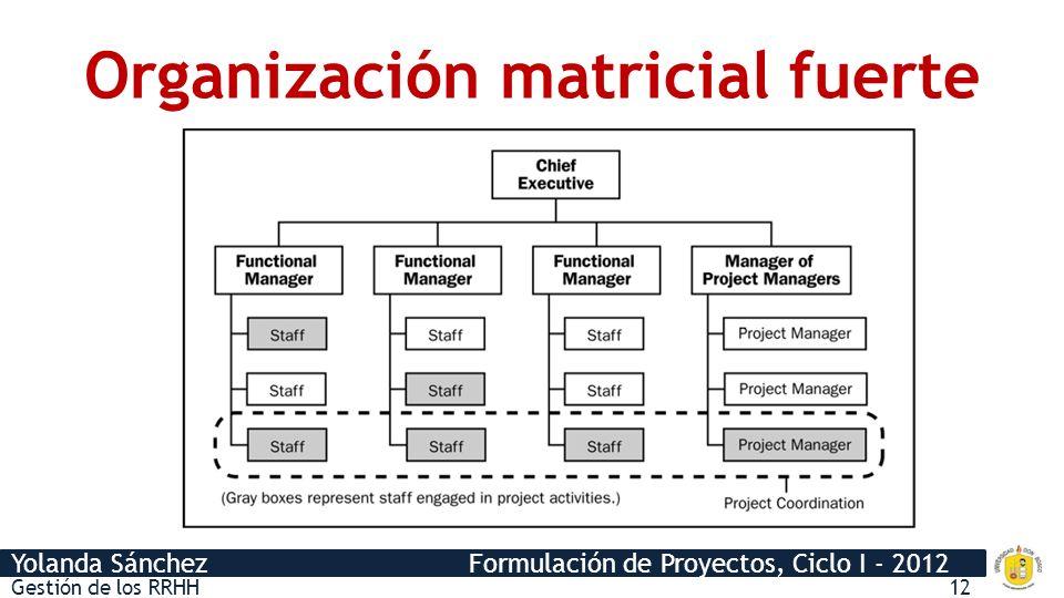 Organización matricial fuerte