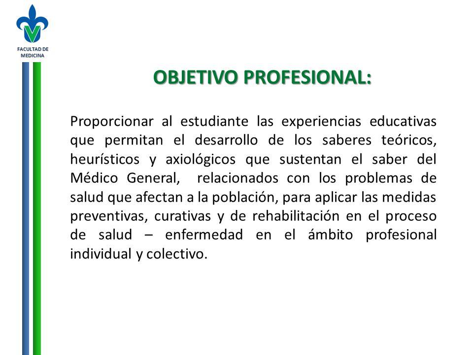 OBJETIVO PROFESIONAL: