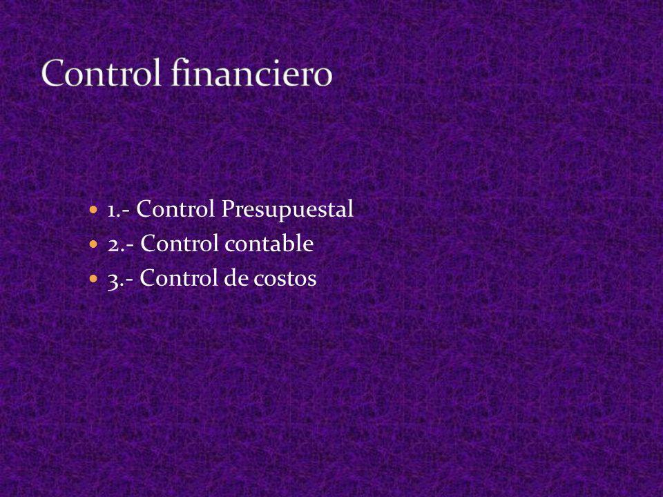 Control financiero 1.- Control Presupuestal 2.- Control contable