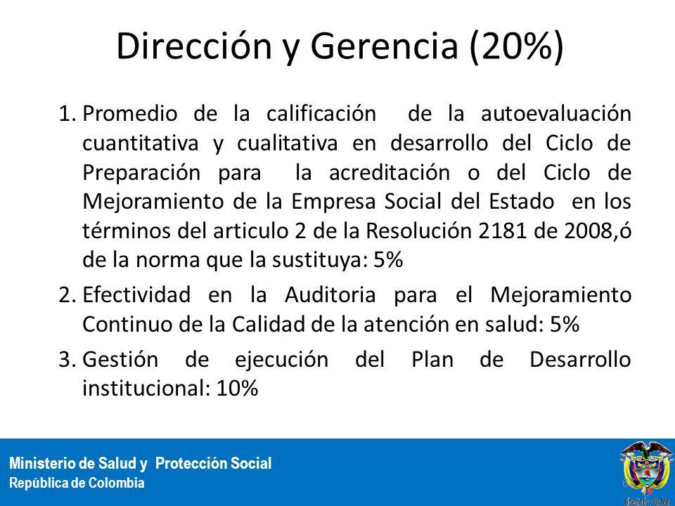 Dirección y Gerencia (20%)
