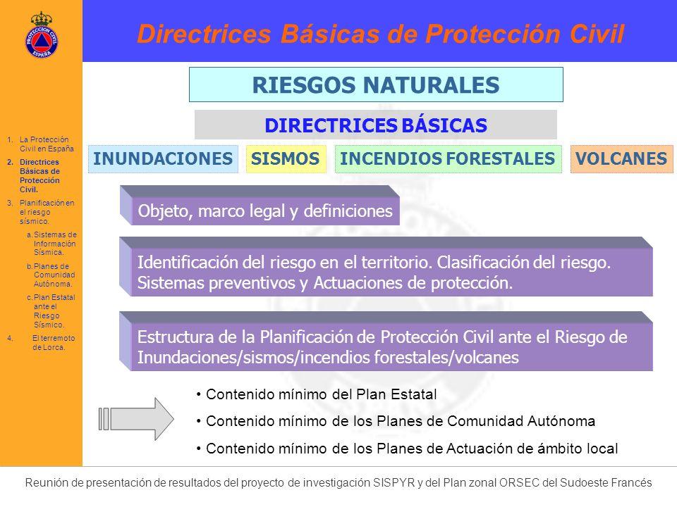 Directrices Básicas de Protección Civil