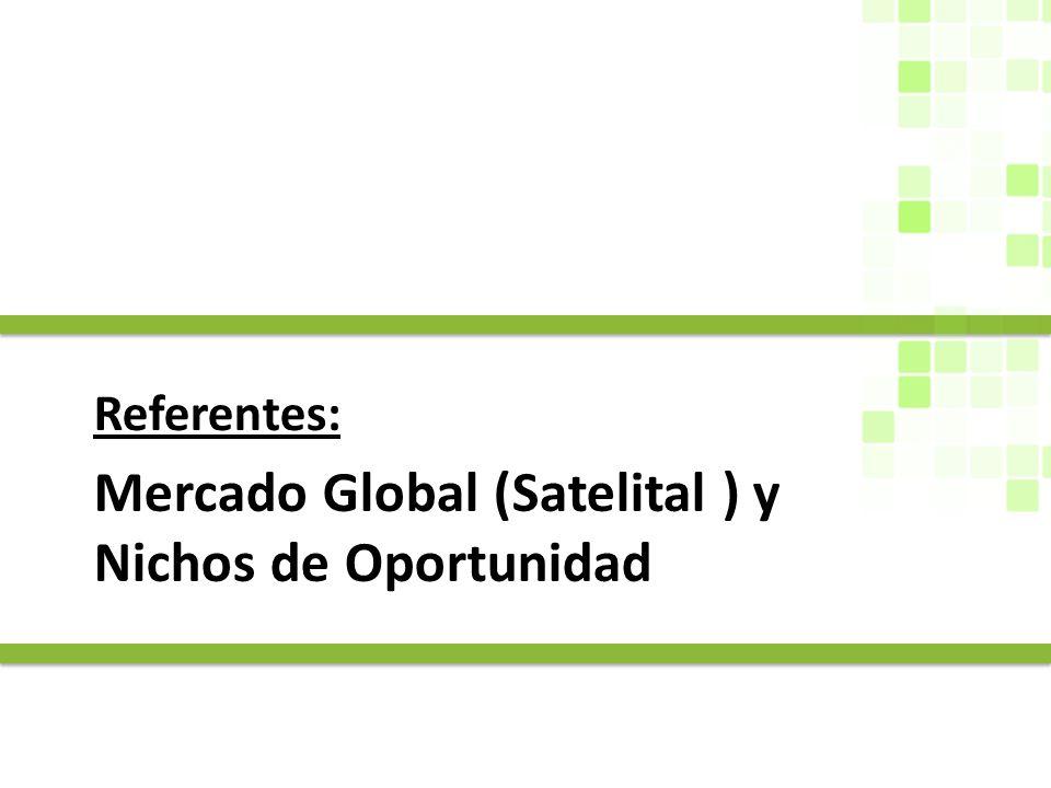Mercado Global (Satelital ) y Nichos de Oportunidad