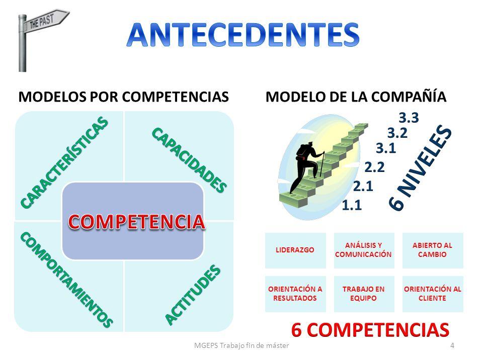 ANTECEDENTES 6 NIVELES COMPETENCIA 6 COMPETENCIAS
