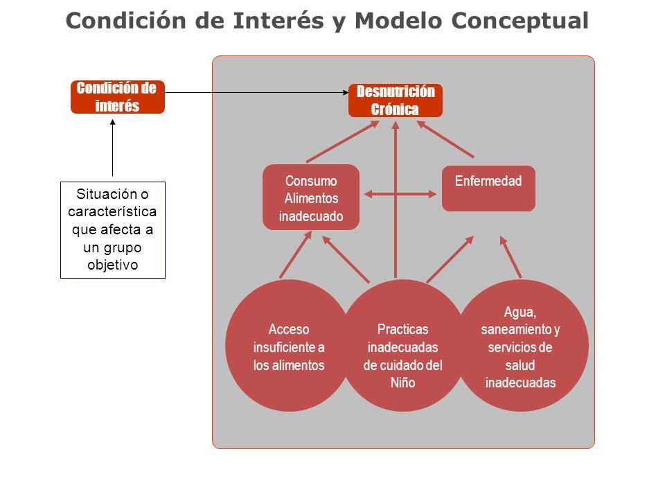 Condición de Interés y Modelo Conceptual