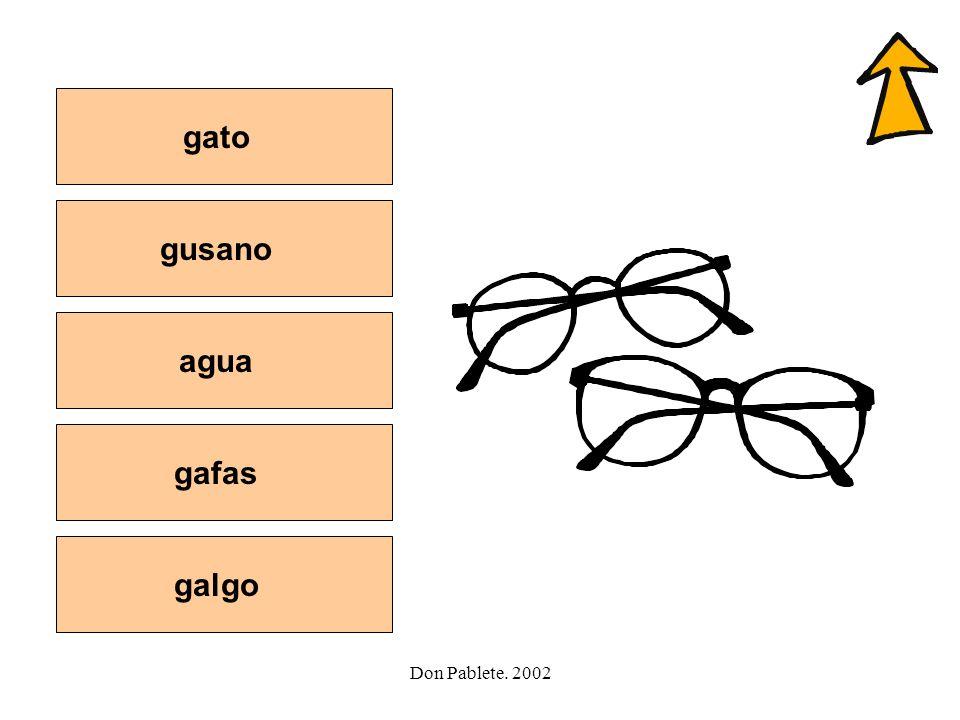 gato gusano agua gafas galgo