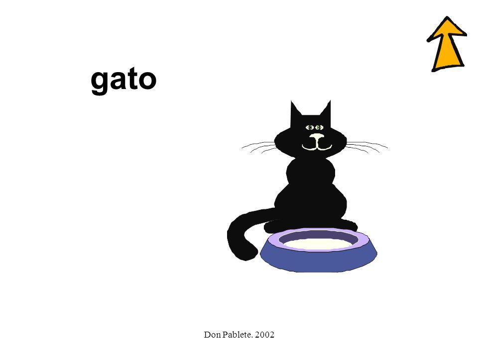 gato Don Pablete. 2002