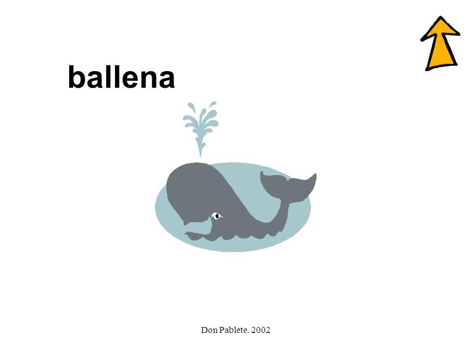 ballena Don Pablete. 2002