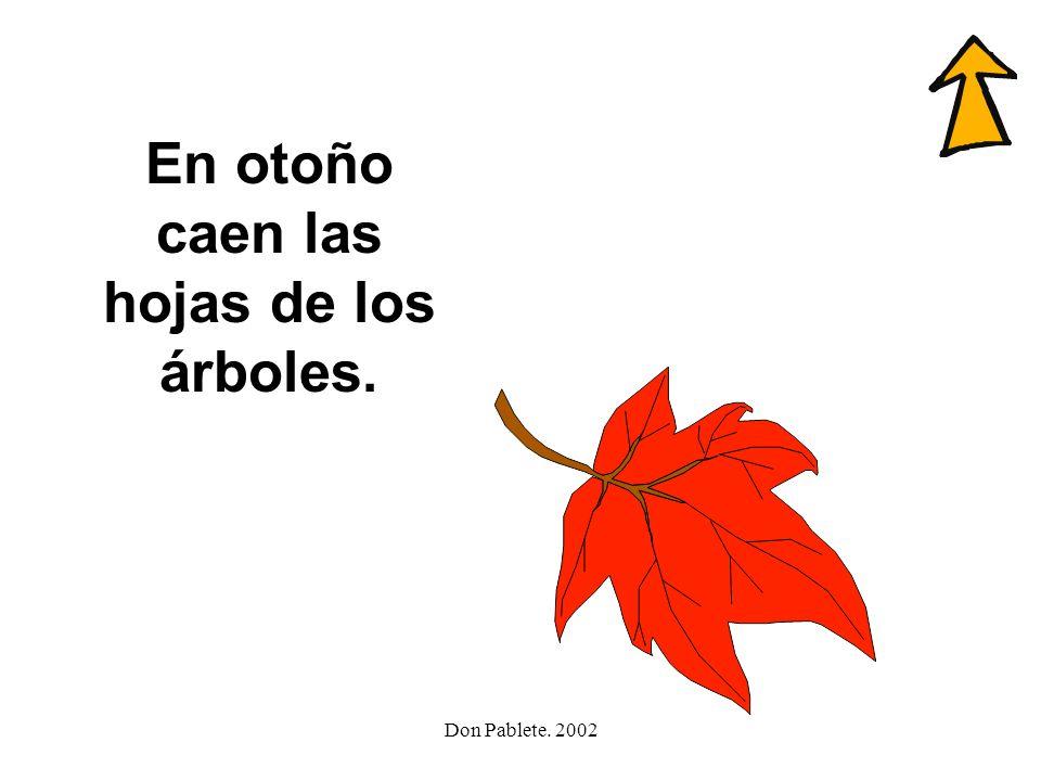En otoño caen las hojas de los árboles.