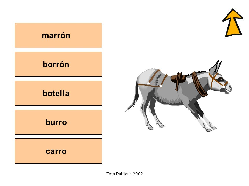 marrón borrón botella burro carro