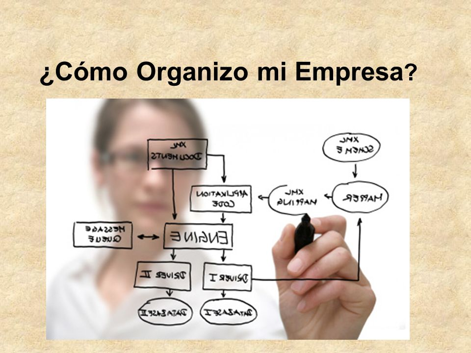 ¿Cómo Organizo mi Empresa
