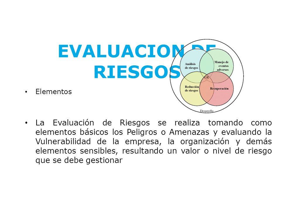 EVALUACION DE RIESGOS Elementos.