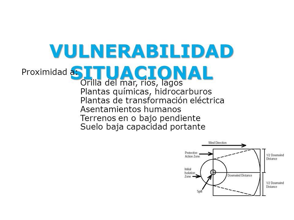VULNERABILIDAD SITUACIONAL