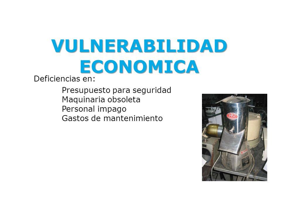 VULNERABILIDAD ECONOMICA