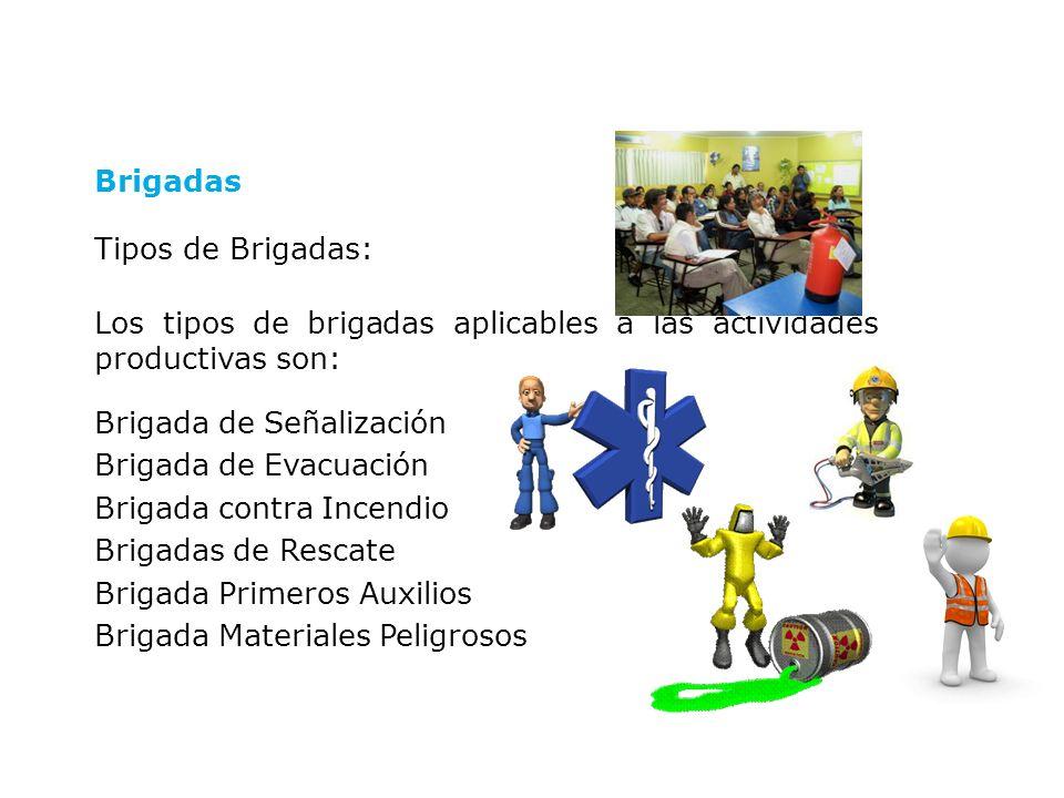 Organización de Brigadas: