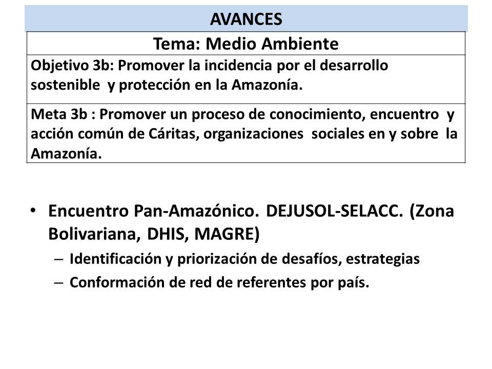 AVANCES Tema: Medio Ambiente