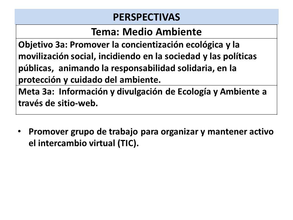 PERSPECTIVAS Tema: Medio Ambiente
