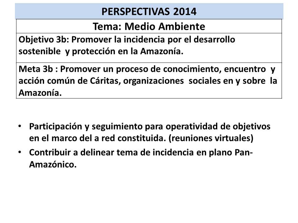 PERSPECTIVAS 2014 Tema: Medio Ambiente