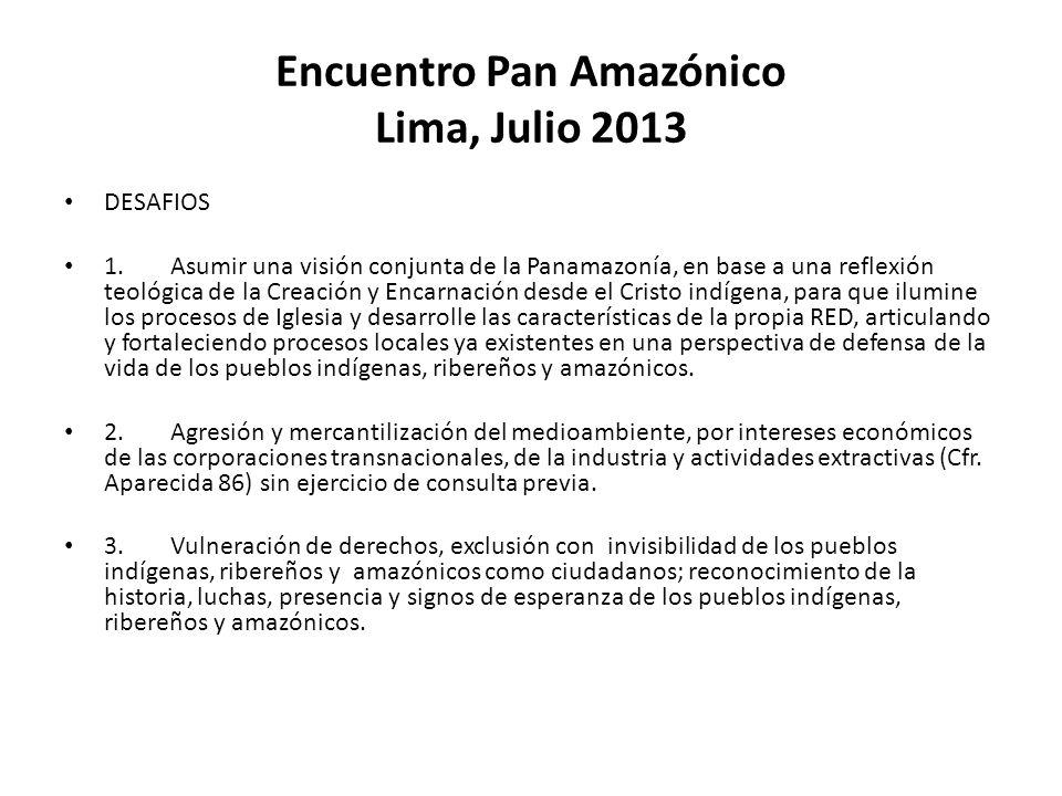Encuentro Pan Amazónico Lima, Julio 2013