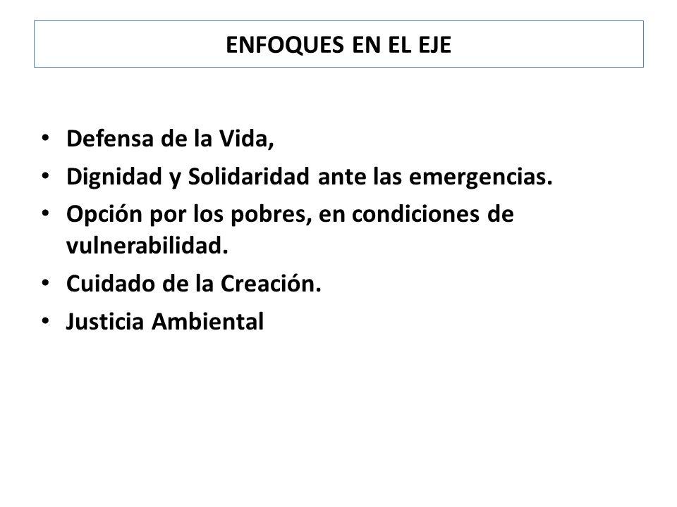 ENFOQUES EN EL EJE Defensa de la Vida, Dignidad y Solidaridad ante las emergencias. Opción por los pobres, en condiciones de vulnerabilidad.