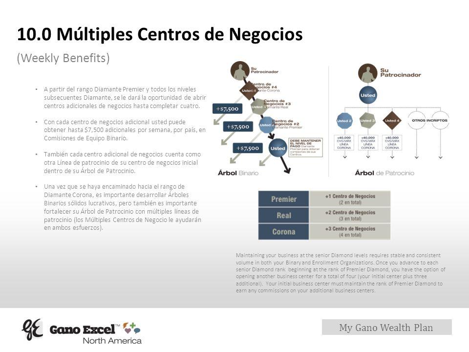 10.0 Múltiples Centros de Negocios