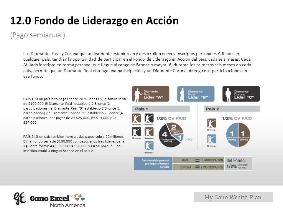 12.0 Fondo de Liderazgo en Acción