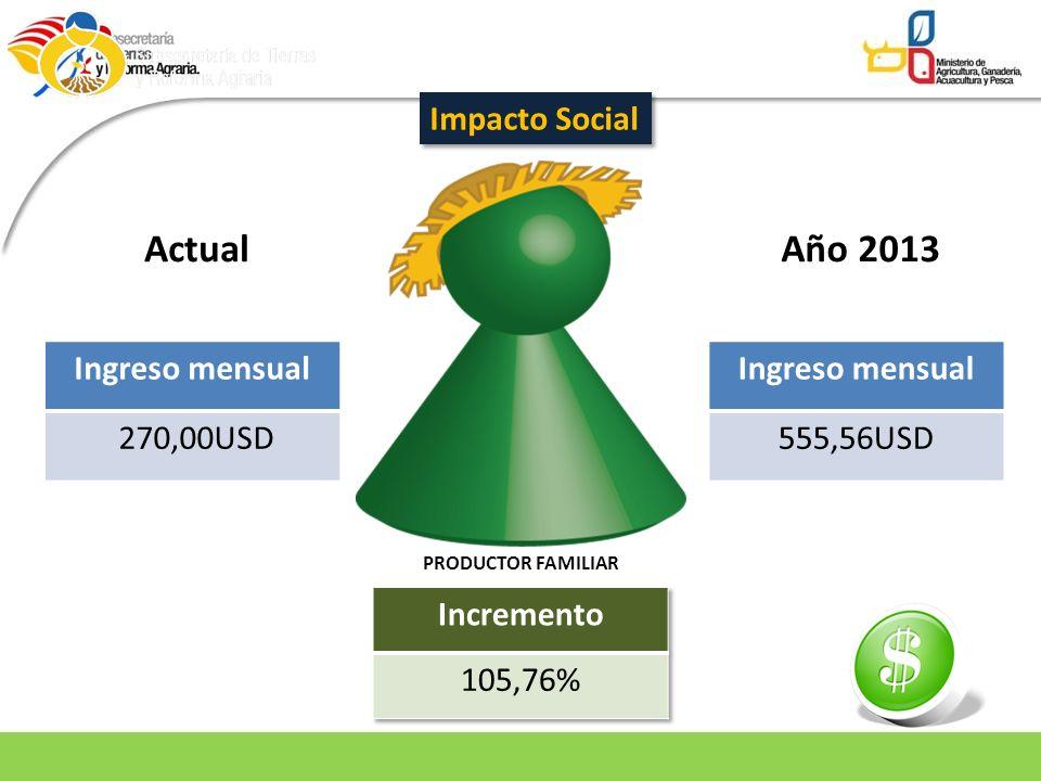 Actual Año 2013 Impacto Social Ingreso mensual 270,00USD