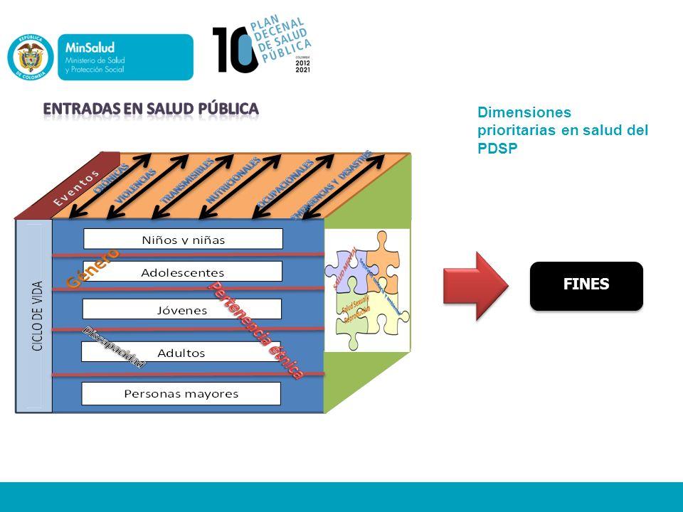 Dimensiones prioritarias en salud del PDSP