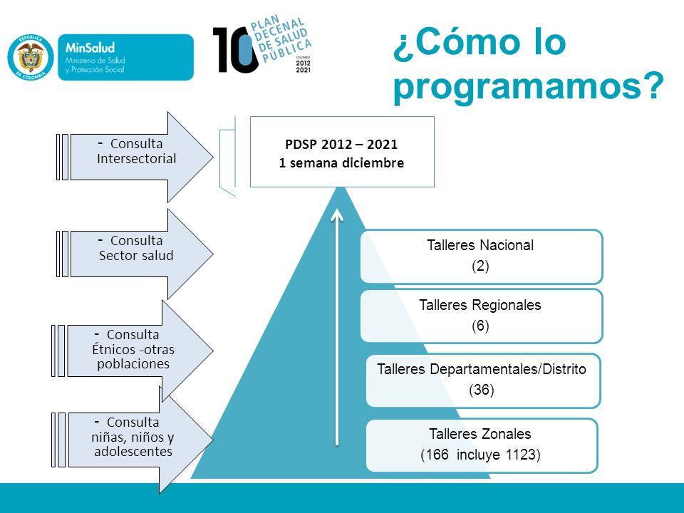 ¿Cómo lo programamos Consulta Intersectorial PDSP 2012 – 2021