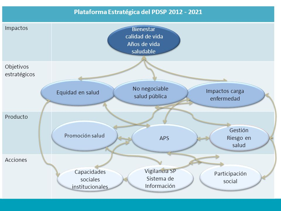 Plataforma Estratégica del PDSP 2012 - 2021