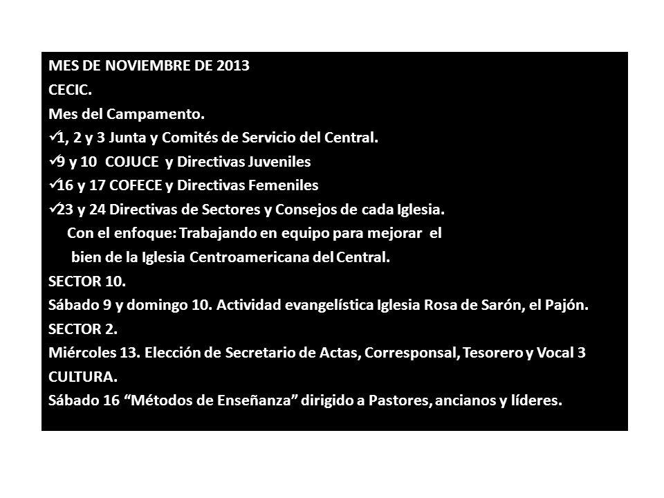 MES DE NOVIEMBRE DE 2013 CECIC. Mes del Campamento. 1, 2 y 3 Junta y Comités de Servicio del Central.